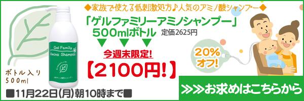ゲルファミリーアミノシャンプー500mlボトルが20%オフ!11/22朝10時まで